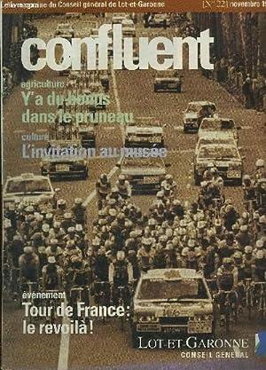 CONFLUENT N°22 NOVEMBRE 1995 - Agriculture y'a: COLLECTIF