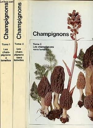 CHAMPIGNONS EN 2 TOMES : TOME 1: SCHLITTLER JOKOB