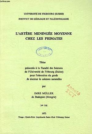 L'ARTERE MENINGEE MOYENNE CHEZ LES PRIMATES (THESE): MULLER IMRE