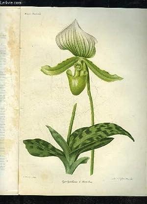 LA REVUE HORTICOLE 1913 N° 12 - D. Bois et G. T.-Grignan . . Chronique horticole.*J. PinelleLes...