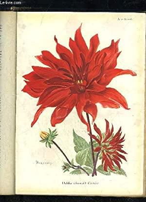 LA REVUE HORTICOLE 1927 N° 16 - H. Martinet. .F. Lesourd. \ Chronique horticole.A. Petit. — ...