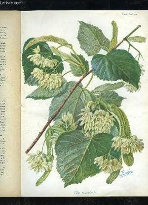 LA REVUE HORTICOLE 1933 N° 16 - H. Martinet, F, Lesourd. ) Chronique horticole.F.Lesourd. — M. ...
