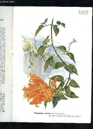 LA REVUE HORTICOLE 1939 N° 17 - Chronique horticole.Projet d'érection d'un ...