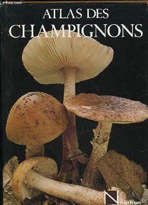 ATLAS DES CHAMPIGNONS: RINALDI A. / TYNDALO V.