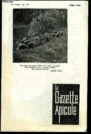 LA GAZETTE APICOLE N° 473 - LES CORNES DU DIABLES CHEZ L'ABEILLE BUTINEUSE, UNE METHODES ...