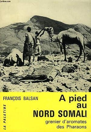 A PIED AU NORD SOMALI, GRENIER D'AROMATES DES PHARAONS: BALSAN FRANCOIS
