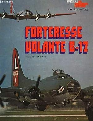 FORTERESSE VOLANTE B-17: KIT MISTER COCK