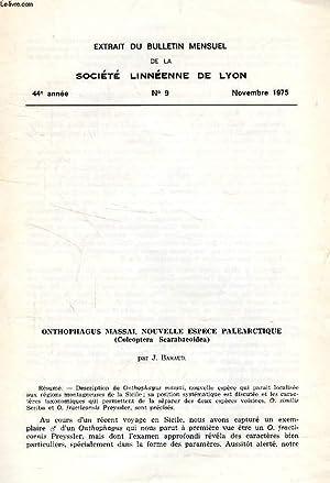 ONTOPHAGUS MASSAI, NOUVELLE ESPECE PALEARCTIQUE (COL. SCARABAEOIDEA): BARAUD JACQUES