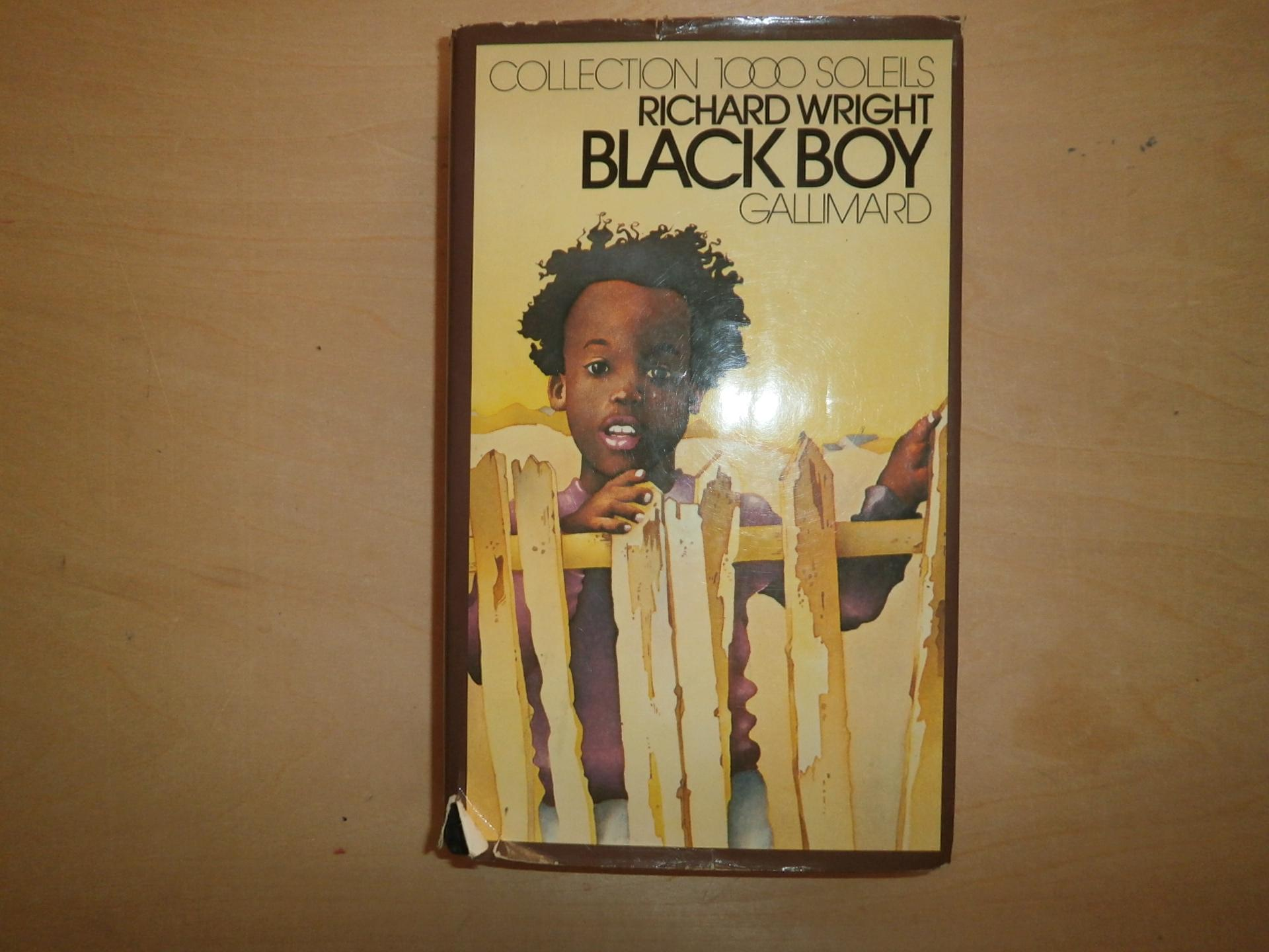 a discussion of the reviews of richard wrights native son