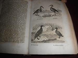 Obras completas de Leclerc de Buffon. Con las clasificaciones comparadas de Cuvier y la ...