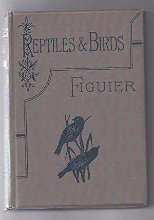 Reptiles & Birds : A Popular Account: Figuier Louis