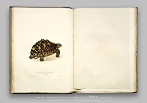 A Monograph of the Testudinata (facsimile of: Bell, Thomas (illustrated
