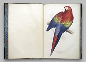 Illustrations of the Family of Psittacidae, or: Lear, Edward (introduction