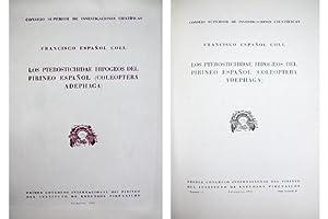 Los Pterostichidae Hipogeos del Pirineo español (Coleoptera Adephaga).: ESPAÑOL COLL, ...