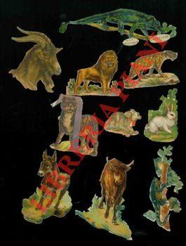 Entdecken sie sammlungen von animali kunst und for Piani domestici tropicali