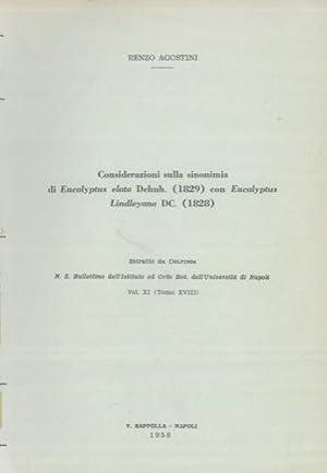 Considerazioni sulla sinonimia di Eucalyptus elata Dehnh.: AGOSTINI Renzo -