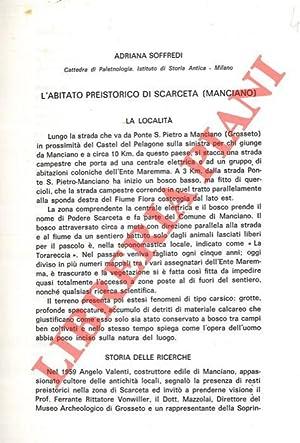 L'abitato preistorico di Scarceta (Manciano) .: SOFFREDI Adriana -