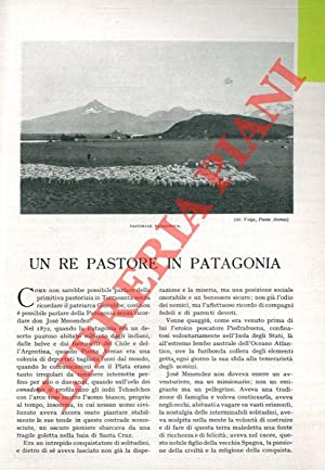 Un re pastore in Patagonia.