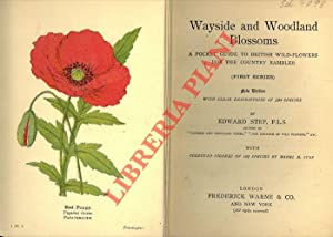 Wayside and woodland blossom. A pocket guide to British wild-flowers for the country rambler (fir...