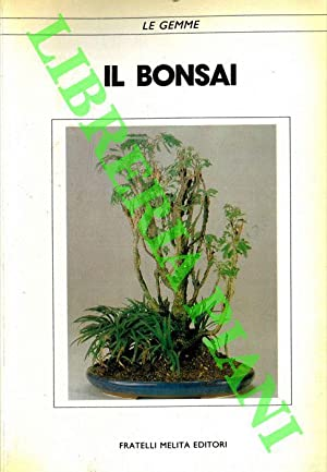 Il bonsai.