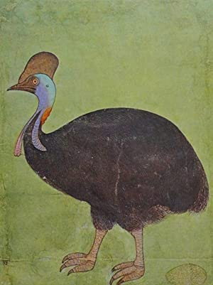 TREASURE OF INDIAN PAINTING SERIES FOUR : MUGHAL BIRDS AND ANIMAL DRAWINGS