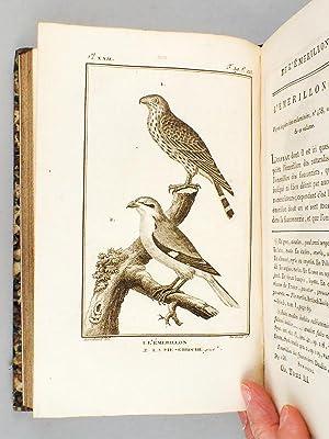 Histoire Naturelle des Oiseaux, par Leclerc de Buffon. Tome Troisième [ Tome 3 seul ] R&...