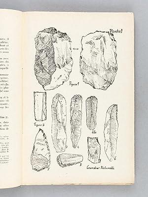 Découvertes archéologiques dans le Pays de Buch (3 Tomes - Complet) Première ...
