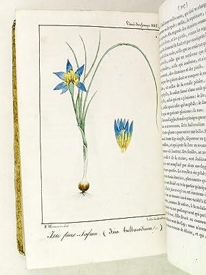 L'Ami des Champs. Journal d'Agriculture, de Botanique & Bulletin Littéraire du...