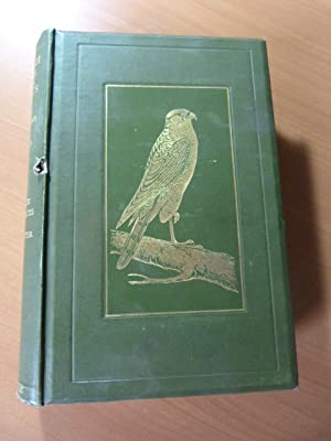 British birds in their haunts. Oiseaux. Ornithologie. 1909