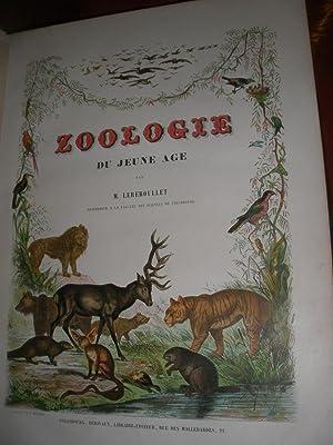 ZOOLOGIE DU JEUNE AGE OU HISTOIRE NATURELLE DES ANIMAUX ECRITE POUR LA JEUNESSE: LEREBOULLET A.