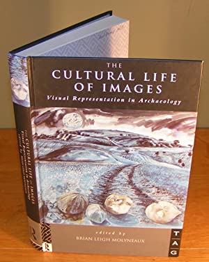 THE CULTURAL LIFE OF IMAGES visual representation in archaeology
