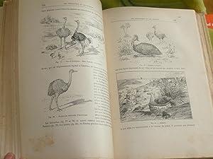Les Arts Et Métiers Chez Les Animaux. Deuxième Edition: Coupin Henri