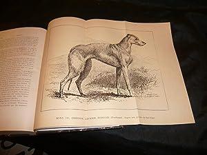 Annales De Médecine Vétérinaire. Volume 40: Collectif