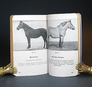 Das Truppenpferd. Heft I: Pferdepflege, Stallpflege, Füttern und Tränken. Vom 18.8.37. (...