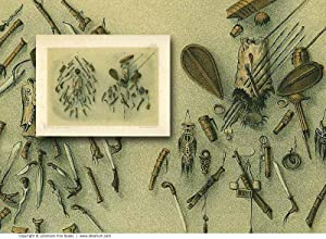 INDIGENOUS WEAPONS: Original 19th Century Tinted Lithograph Print.