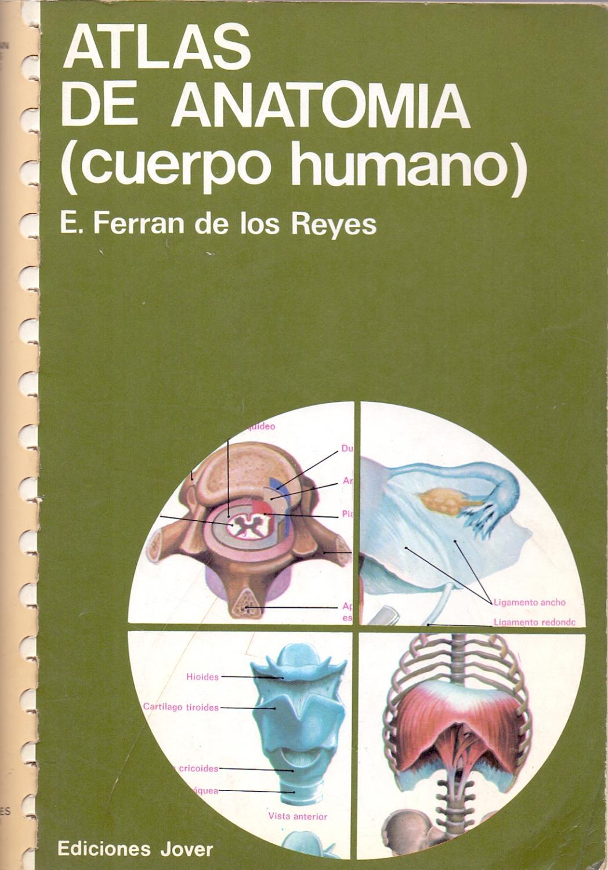 atlas cuerpo humano anatomia - Iberlibro