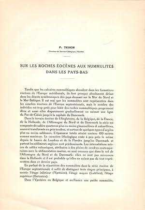 SUR LES ROCHES EOCENES AUX NUMMULITES DANS: P. Tesch (Geologique