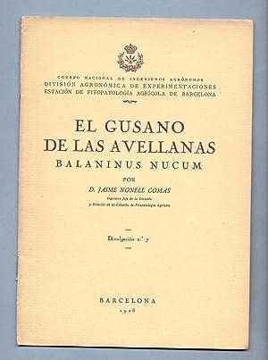 EL GUSANO DE LAS AVELLANAS BALANINUS NUCUM: Jaime Nonell Comas