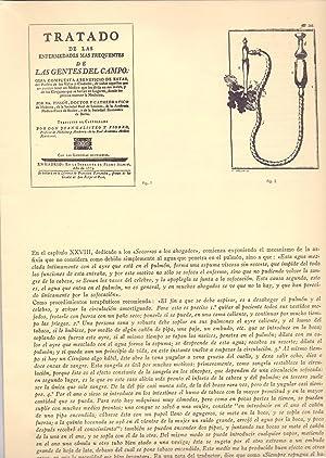 NOTAS PARA LA HISTORIA DEL SOCORRISMO: Profesor Diego Ferrer
