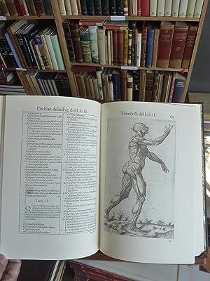 HISTORIA DE LA ANATOMIA: Giovanni Valuerde