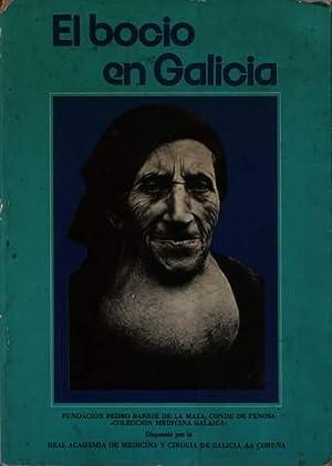EL BOCIO EN GALICIA: AA. VV.