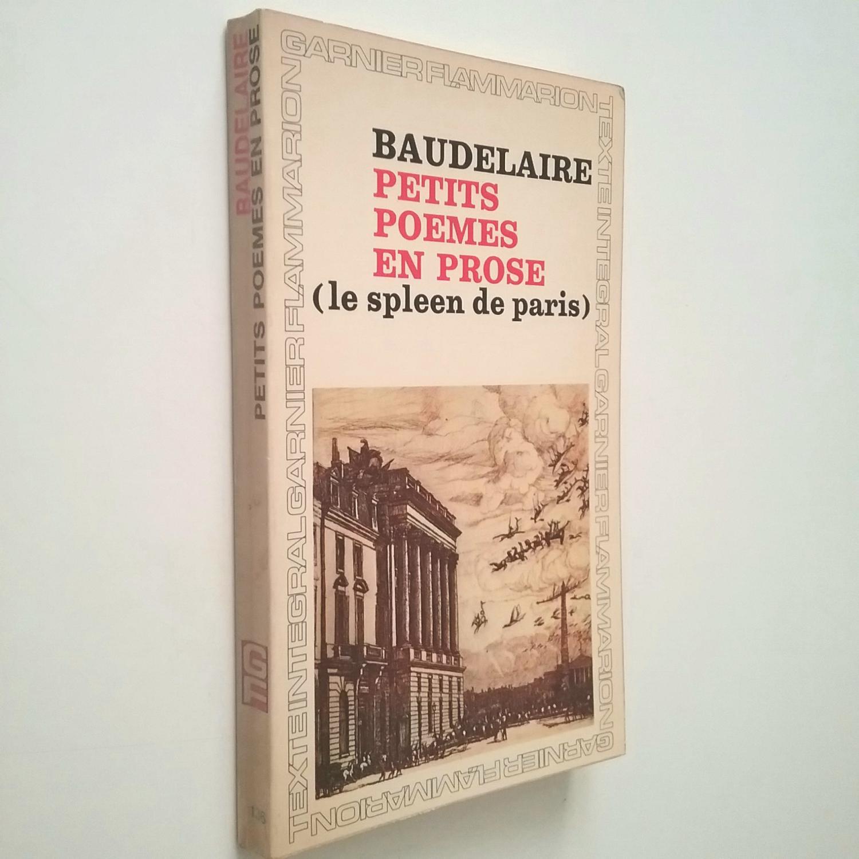 Petits Poèmes En Prose Le Spleen De Paris