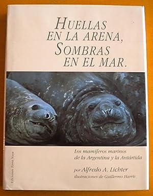 Huellas en la arena, sombras en el: Lichter Alfredo A.