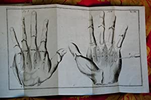Compendium anatomicum, totam rem anatomicam brevissime complectens.: Heister Lorenzo