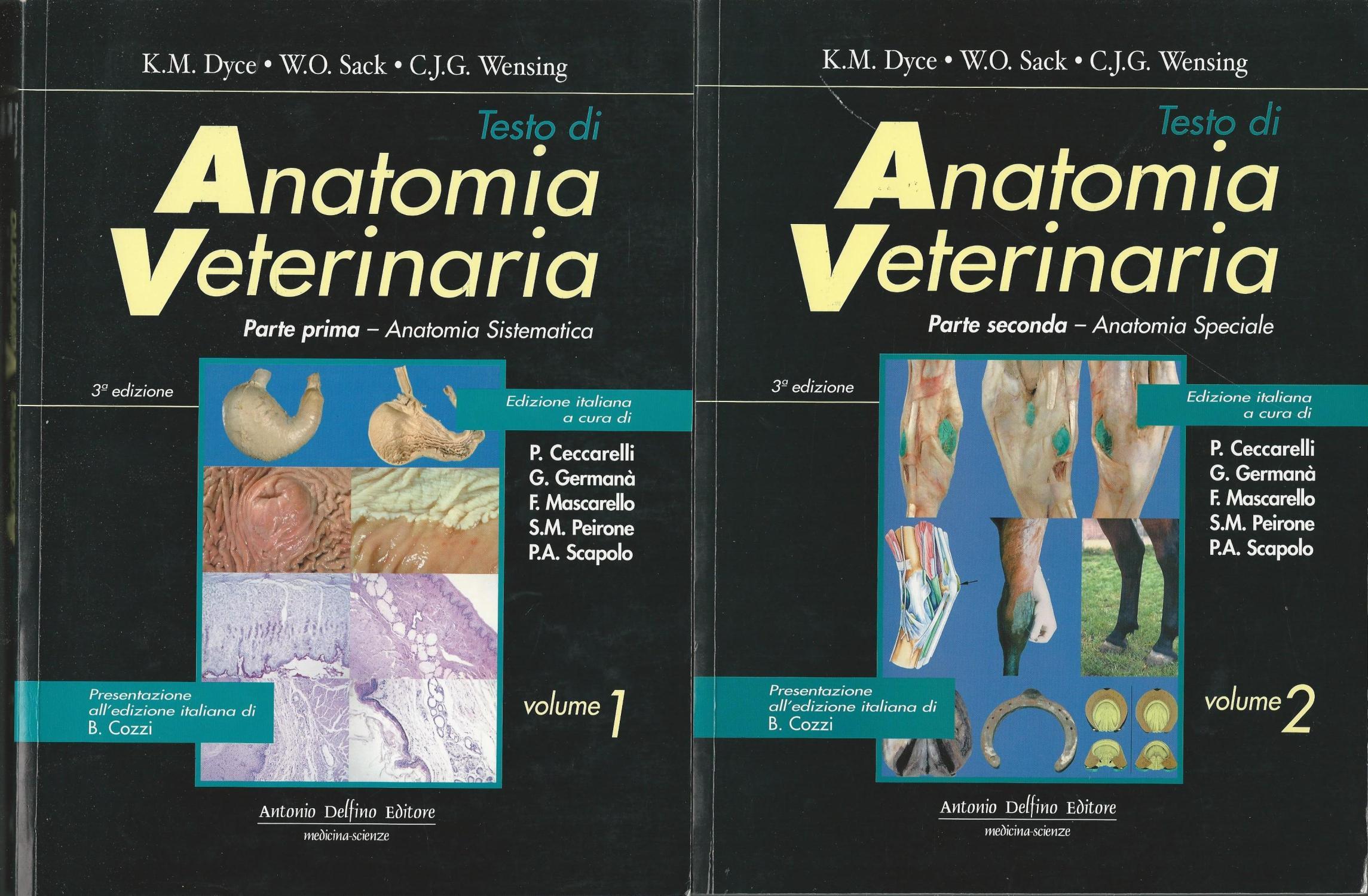 anatomia veterinaria de dyce - Iberlibro