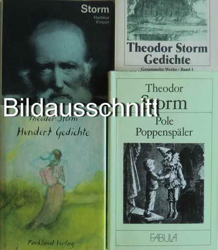 4 Bücher: Theodor Storm in Selbstzeugnissen /: Vincon, Hartmut /