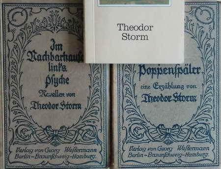 3 Büchlein: Pole Poppenspäler / Im Nachbarhause: Storm, Theodor
