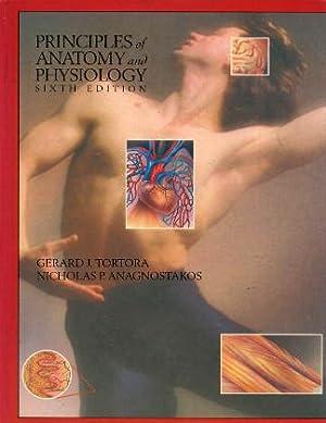 Principles of Anatomy and Physiology: Tortora, Gerard J.