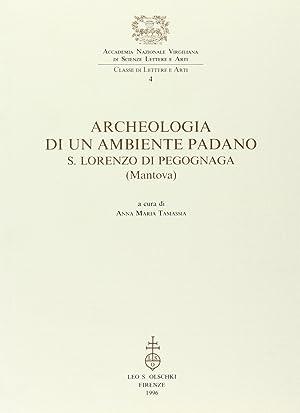 Archeologia di un ambiente padano. S. Lorenzo