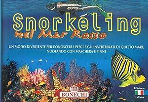 Snorkeling nel Mar Rosso. Un modo divertente: Ghisotti, Andrea